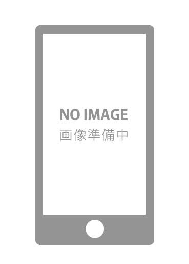 iPod touch 第5世代 分解画像 なし